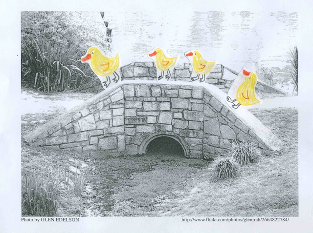 ducks-on-bridge
